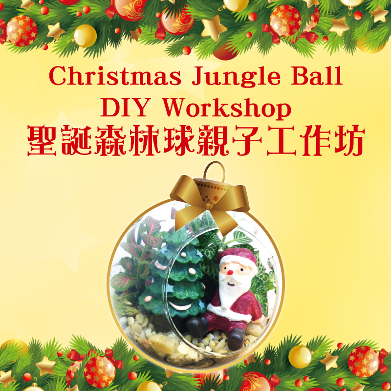 CHRISTMAS JUNGLE BALL DIY WORKSHOP
